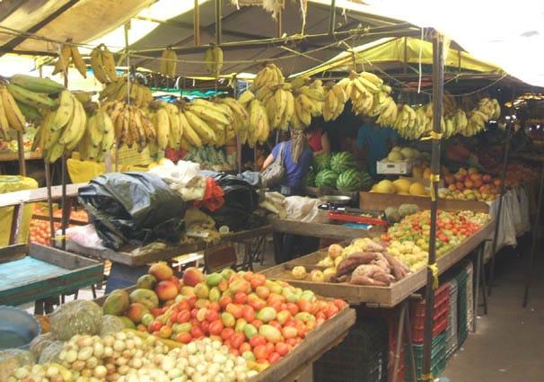 FEIRA LIVRE: 24 anos do ponto de encontro da economia popular, a caixa de ressonância da sociedade pirambuense